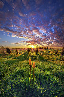 Unity Photograph - Until Then by Phil Koch