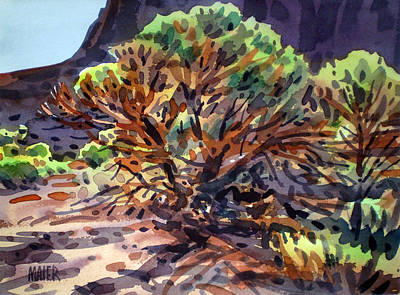 Utah Juniper Original by Donald Maier