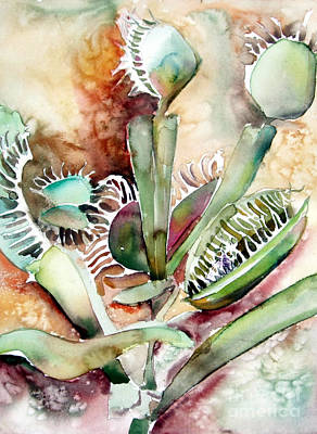 Pitcher Drawing - Venus Fly Trap by Mindy Newman