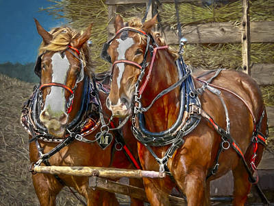 Feed Mill Photograph - Wagon Of Wheat by F Leblanc