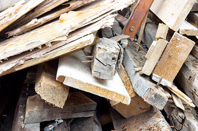 Junk Photograph - Waste Wood by Tom Gowanlock