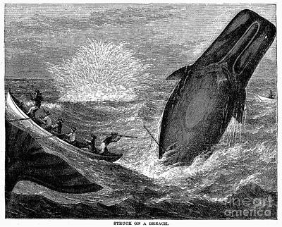 Whaling, 19th Century Print by Granger