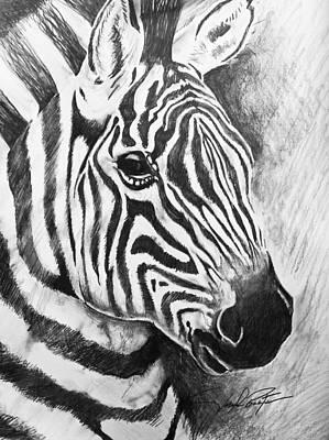 Drawing - Wild Stripes by Joseph Palotas