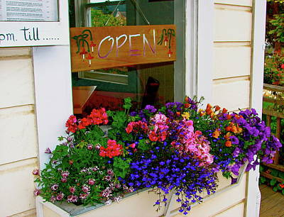 Storefront Photograph - Window View by Lisa Billingsley