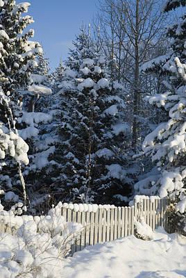 Winter Original by Igor Sinitsyn