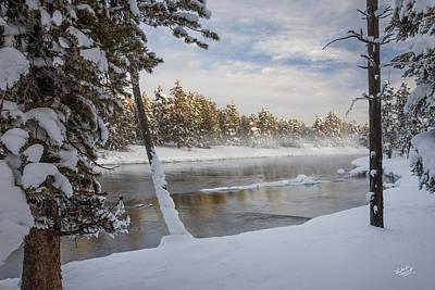 Buffalo Photograph - Winter Morning by Leland D Howard