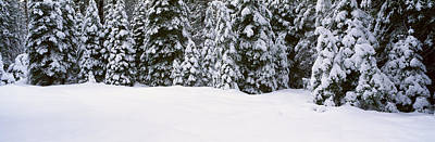 Winter Snowstorm In The Lake Tahoe Print by Panoramic Images