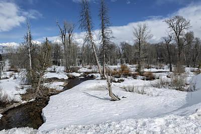 Winter Wonderland - Grand Tetons National Park Print by Belinda Greb