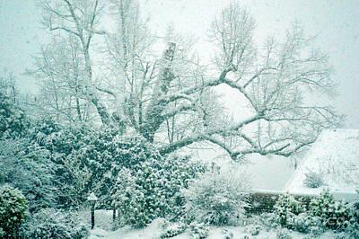 Winter Wonderland In Switzerland Print by Susanne Van Hulst
