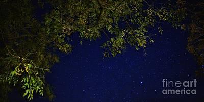 Wishing On A Star Print by Angela J Wright