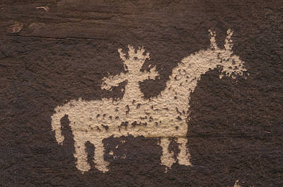 Ute Photograph - Wolfe Ranch Ute Petroglyph Panel by Rich Reid