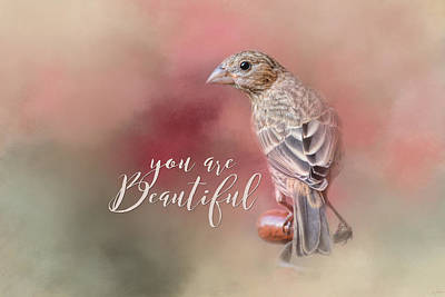 Siskin Photograph - You Are Beautiful by Jai Johnson