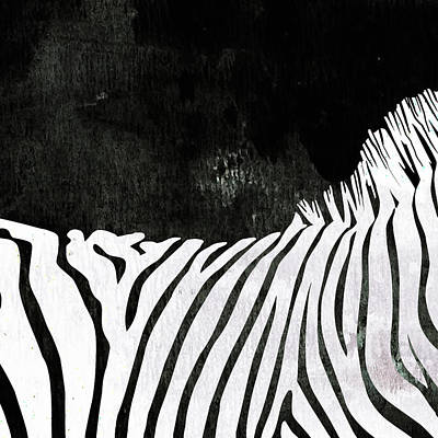 Zebra Painting - Zebra Animal Black And White Decorative Poster 2 - By  Diana Van by Diana Van