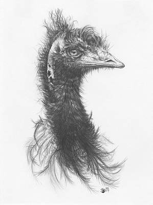 Emu Drawing - 100 Per Cent Humidity by Barbara Keith