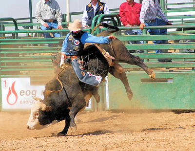 Of Rodeo Bucking Bulls Photograph - 1000 Lbs Of Raw Energy by Cheryl Poland