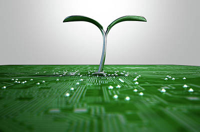 Macro Digital Art - Macro Circuit Board With Futuristic Plant by Allan Swart