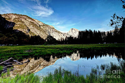 Landscape Photograph - 1199 Half Dome From Scotts Meadow by Steve Sturgill
