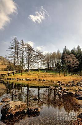 Lake District Photograph - Blea Tarn by Stephen Smith