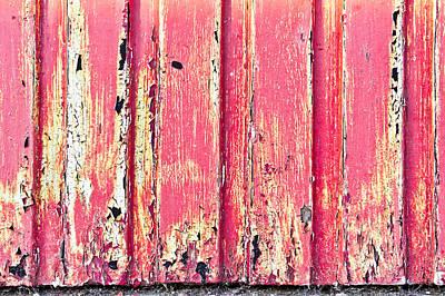 Scruffy Photograph - Red Wood by Tom Gowanlock