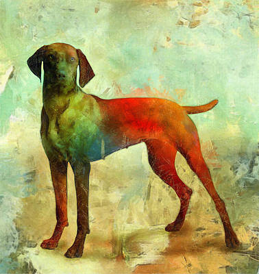 Domestic Animals Digital Art - Dogs by Elena Kosvincheva