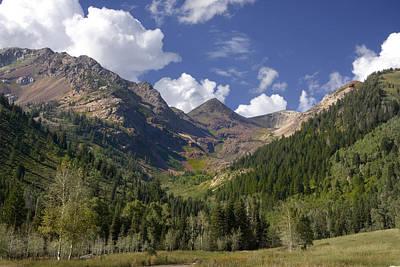 Mountain Meadow Print by Mark Smith