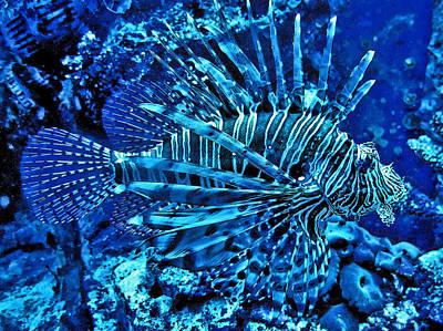 Underwater World. Original by Andy Za