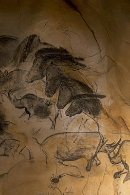 Chauvet Cave Photograph - 150501p086 by Arterra Picture Library