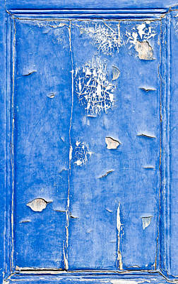 Dried Photograph - Blue Wood  by Tom Gowanlock