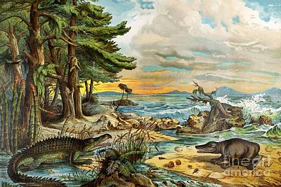 Triassic Photograph - 1888 Color Lithograph Of Triassic Coast by Paul D. Stewart