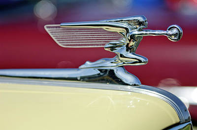 1941 Packard Hood Ornament 3 Print by Jill Reger