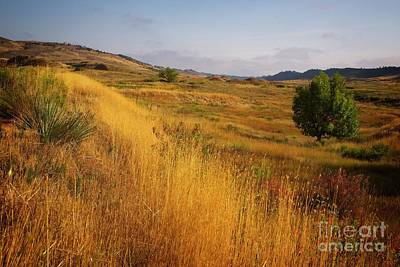 Devils Backbone Photograph - A Hint Of Fall by Jon Burch Photography