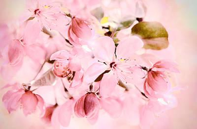 Soft Digital Art - Apple Blossom by Jessica Jenney