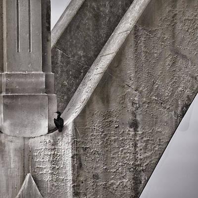 Bay Bridge Photograph - Architectural Detail by Carol Leigh