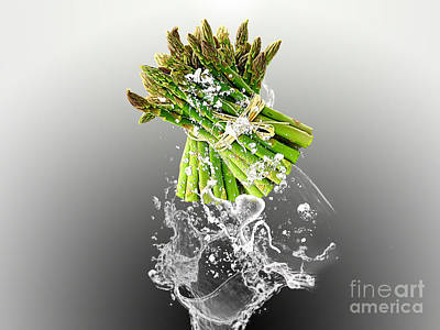 Asparagus Splash Print by Marvin Blaine