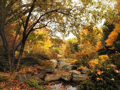Autumn Landscape Photograph - Autumn Garden by Jessica Jenney