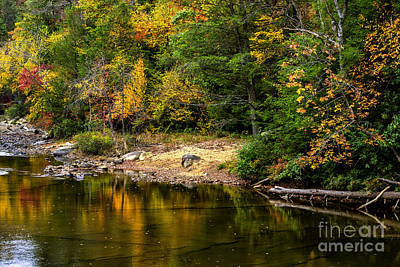 West Fork Photograph - Autumn Middle Fork River by Thomas R Fletcher