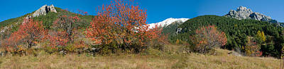 Provence Photograph - Autumn Trees And First Snow In French by Panoramic Images
