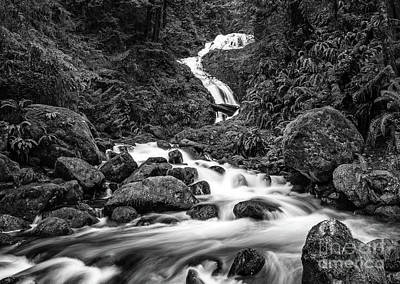 Beautiful Bunch Creek Falls In The Olympic National Park Of Wash Print by Jamie Pham