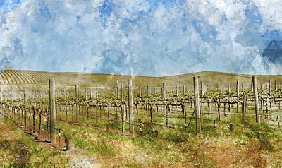 Napa Valley Digital Art - Beautiful Vineyard In Napa Valley by Brandon Bourdages