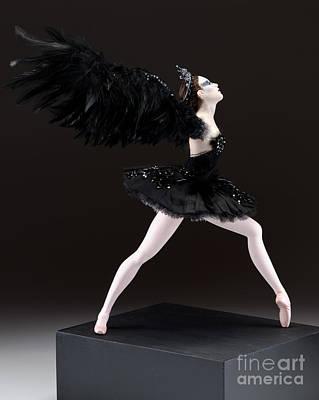 Black Swan  Print by Vickie Arentz