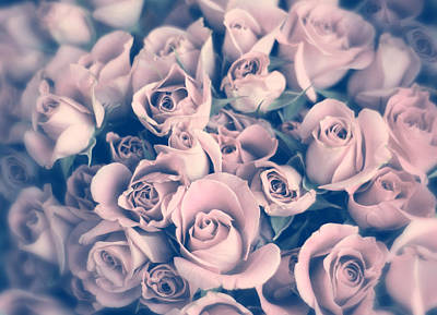 Soft Digital Art - Blush Rose by Jessica Jenney