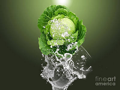 Vegetables Mixed Media - Cabbage Splash by Marvin Blaine