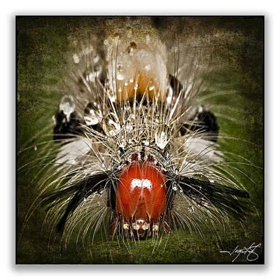 Green Digital Art - Caterpillar 4 by Ingrid Smith-Johnsen