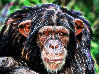 Chimpanzee Mixed Media - Chimpanzee Collection by Marvin Blaine