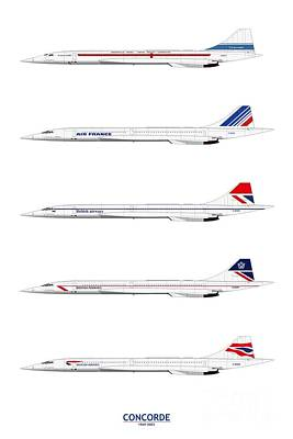 Airliners Drawing - Concorde 1969 To 2003 by Steve H Clark Photography