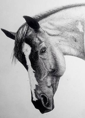 Custom Horse Portrait Drawing - Custom Portrait Horse by Emma Holliday