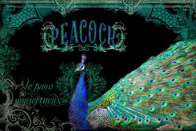 Peacock Mixed Media - Elegant Peacock W Vintage Scrolls  by Audrey Jeanne Roberts