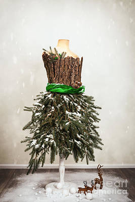 Naturalistic Photograph - Festive Christmas Mannequin by Amanda And Christopher Elwell