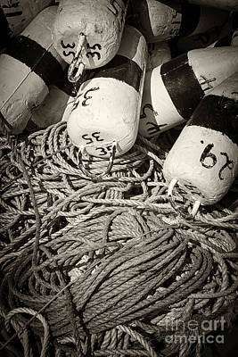 Buoy Photograph - Fishing Floats And Rope by Elena Elisseeva