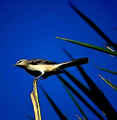 Mockingbird Digital Art - Florida Mockingbird  by Ines Ganteaume